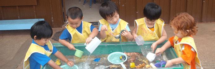 kamaaina preschool kahului preschool kamaaina 625