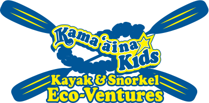 Kama'aina kids Kayak & snorkel Eco-ventures